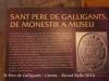 Monestir de Sant Pere de Galligants
