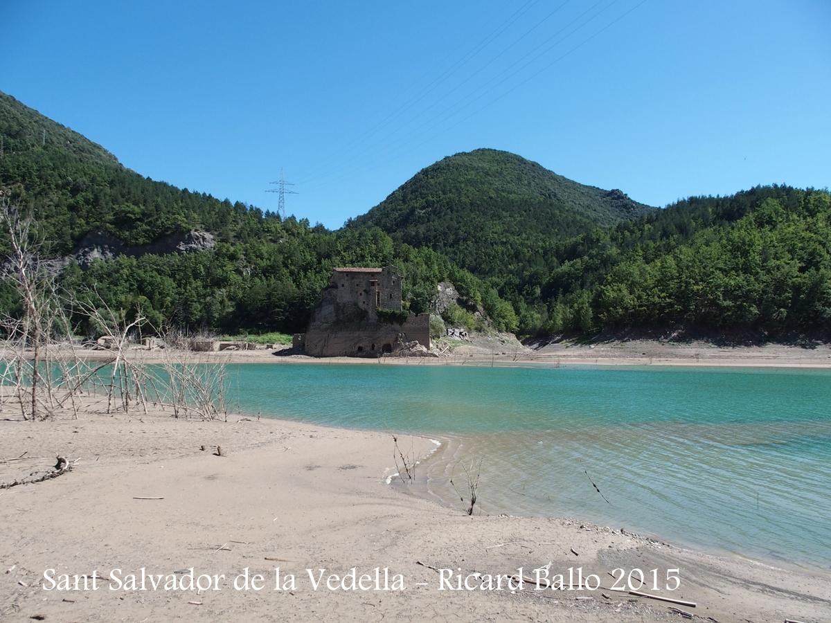 Monestir de Sant Salvador de la Vedella - Cercs