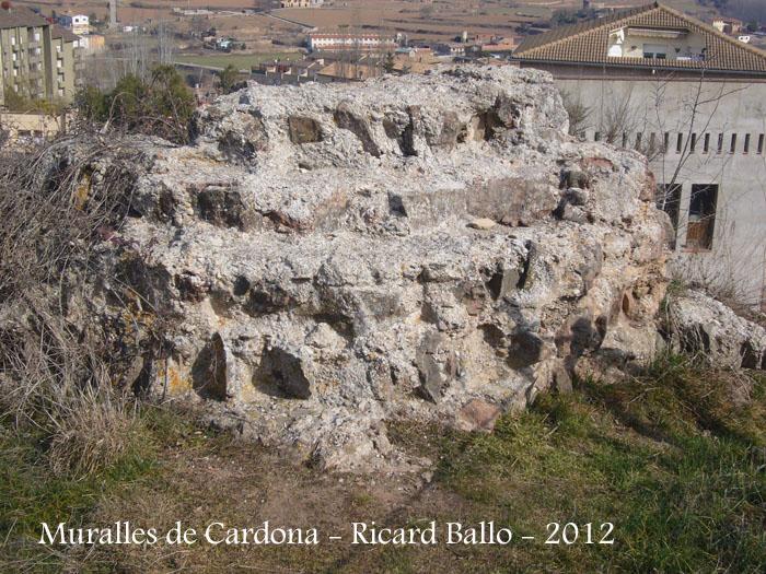 muralles-de-cardona-120225_503