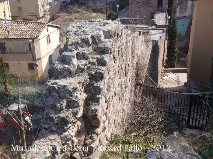 muralles-de-cardona-120225_505