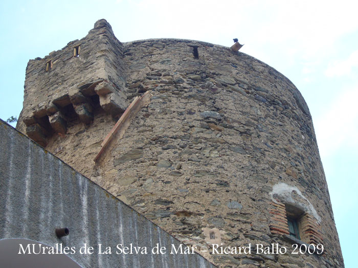 muralles-de-la-selva-de-mar-090507_509