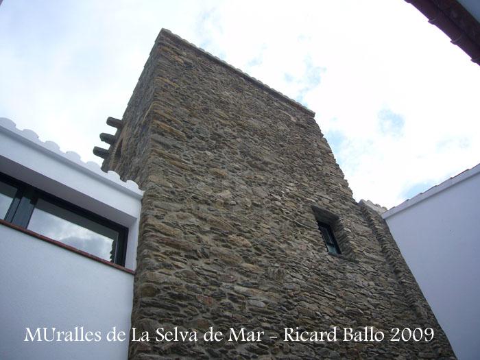 muralles-de-la-selva-de-mar-090507_519