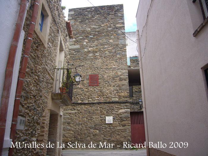 muralles-de-la-selva-de-mar-090507_522