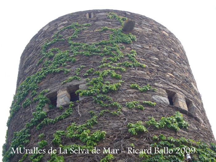 muralles-de-la-selva-de-mar-090507_529