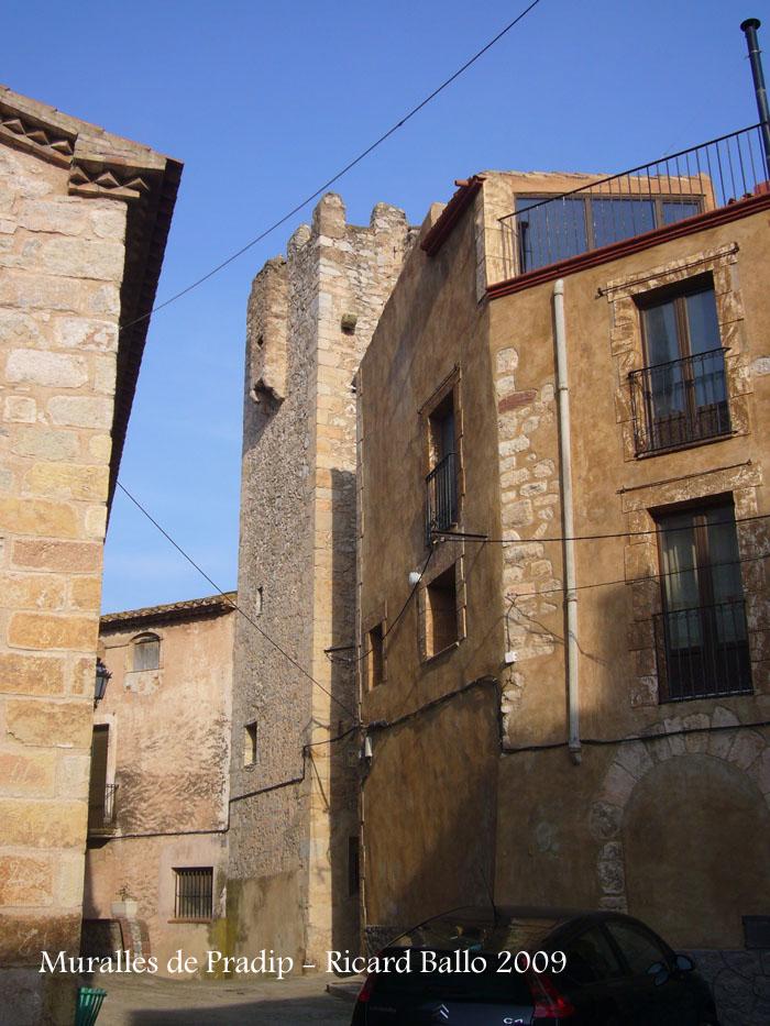 muralles-de-pratdip-090314_527