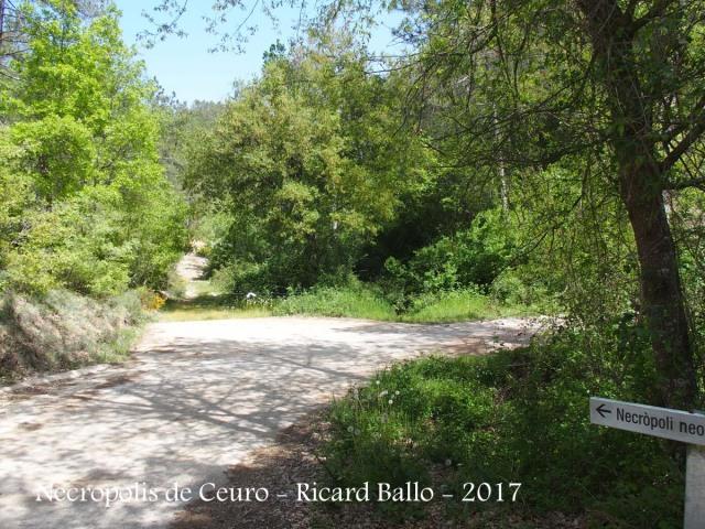 Necròpolis de Ceuró – Castellar de la Ribera