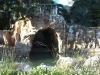 Palau de Marianao-Sant Boi Llobregat-02/11/18