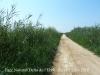 Parc Natural del Delta de l'Ebre – Baix Ebre