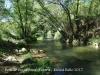 Pont de Buida-sacs – Clariana de Cardener - Entorn