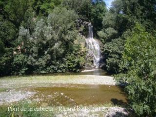 Pont de la Cabreta - Campdevànol