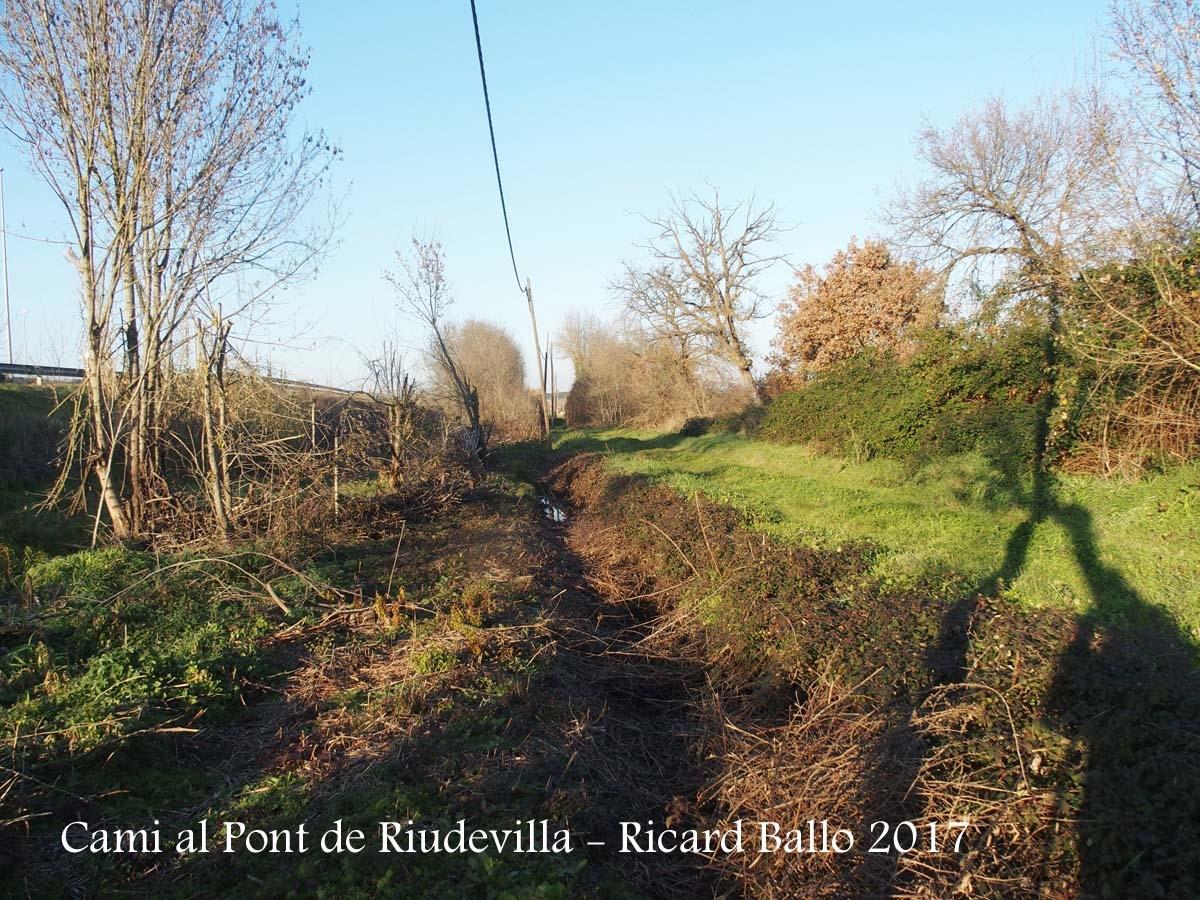 Pont de Riudevilla – Riudellots de la Selva - Heus aquí el tram de camí que fem a peu: a l'esquerra discorre el llit de la riera. Per la dreta, entapissat d'herba, el tram de camí que trepitgem