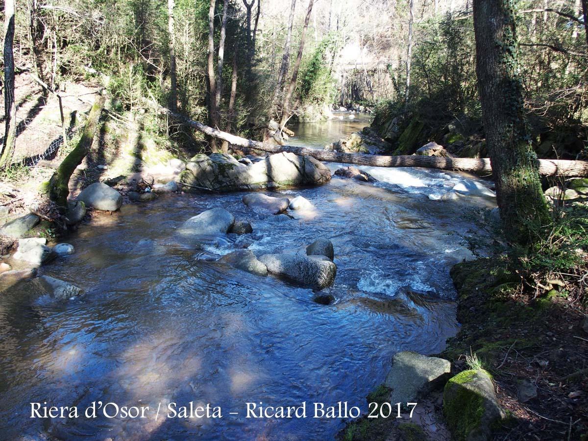 Riera d'Osor a l'alçada del Moli de Saleta - Sant Hilari Sacalm