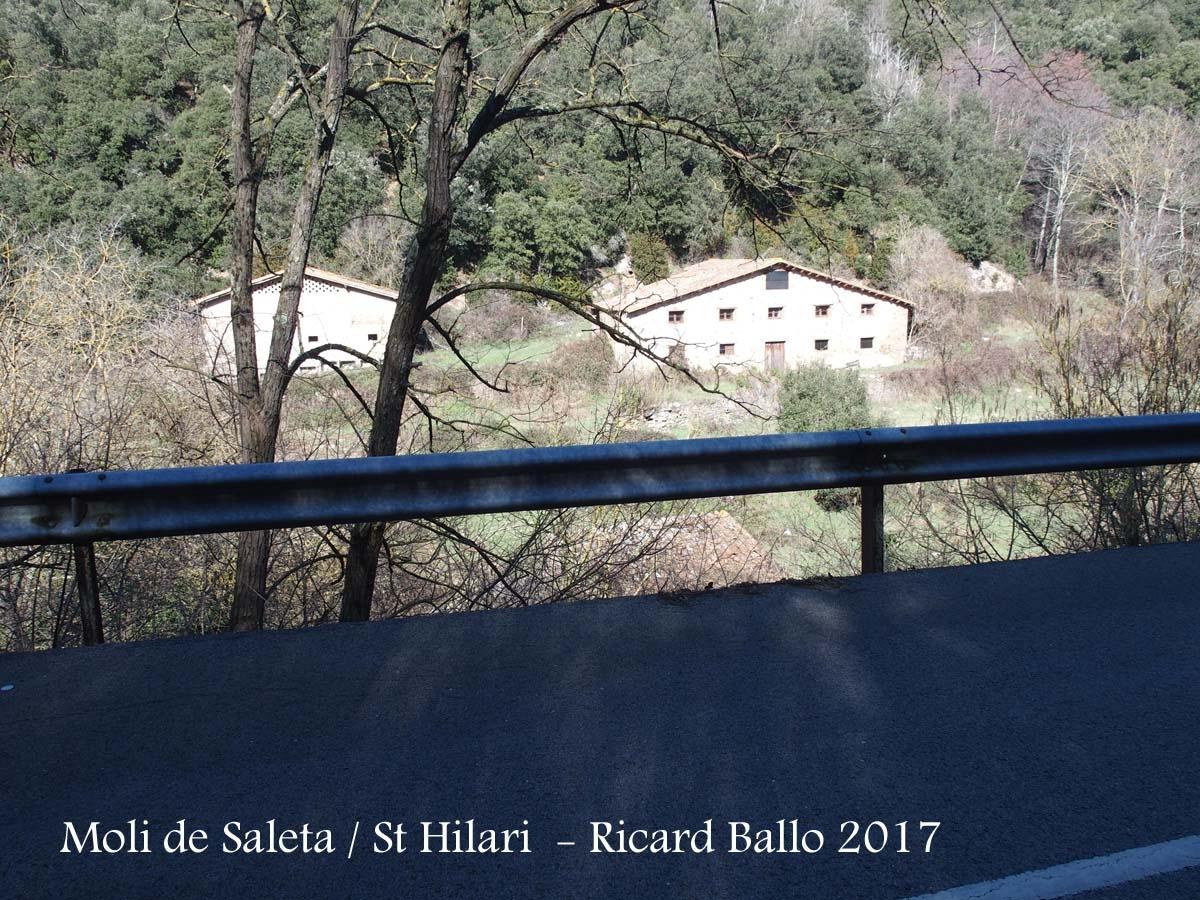 Sant Hilari Sacalm - Vista del Moli de Saleta des del voral de la carretera