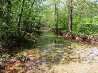 Vora el Pont del molí d'en Solà – La Vall de Bianya / Entorn