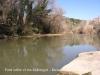 El riu Llobregat al seu pas per Monistrol de Montserrat