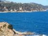 Camins de ronda de Lloret de Mar - Al fons, inconfusible, el castell d'en Plaja ...