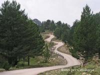 Berguedà - Detall d\'un tram de la carretera que va des del poble abandonat de Peguera, fins a l\'estació d\'esquí dels Rasos de Peguera