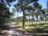 Tàrrega - Parc de Sant Eloi