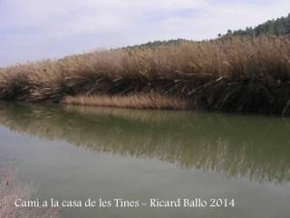 Camí a les Tines de la casa de les tines - Talamanca / Riu Llobregat