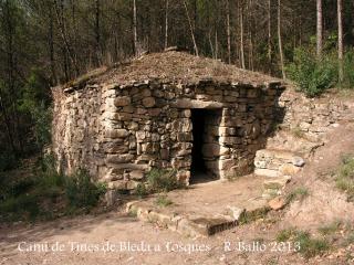 Cabana de camp situada al camí, entre les Tines del Bleda i les del Tosques.