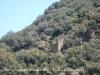 Torre colomer de Castellbò – Montferrer i Castellbò