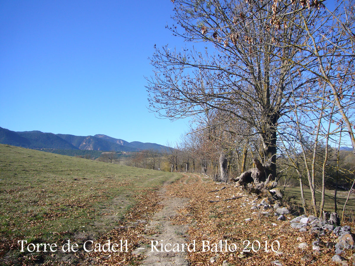 torre-de-cadell-bellver-c-101105_512