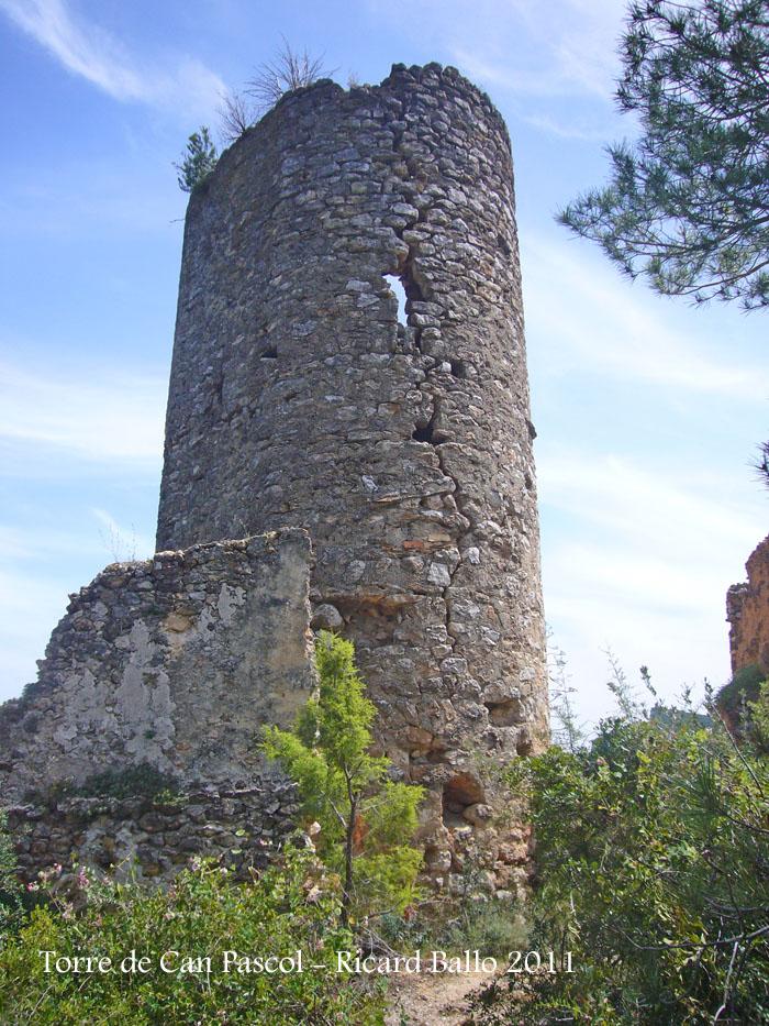 torre-de-can-pascol-castellvi-de-la-marca-110513_509bis