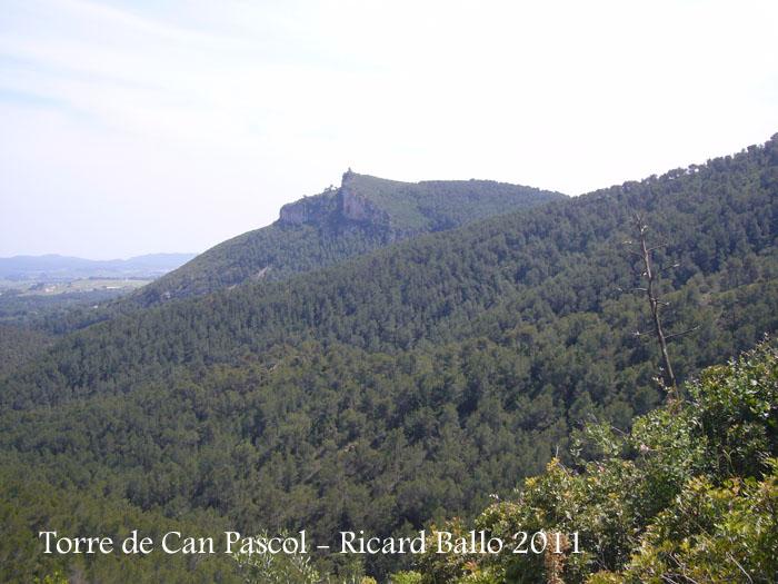 torre-de-can-pascol-castellvi-de-la-marca-110513_526