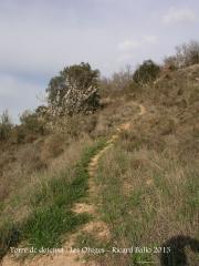 Torre de defensa de les Oluges - Camí a peu. Darrera part de l'itinerari.