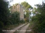 torre-de-fellines-090926_510