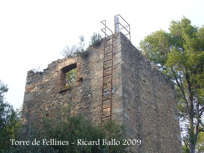 torre-de-fellines-090926_508
