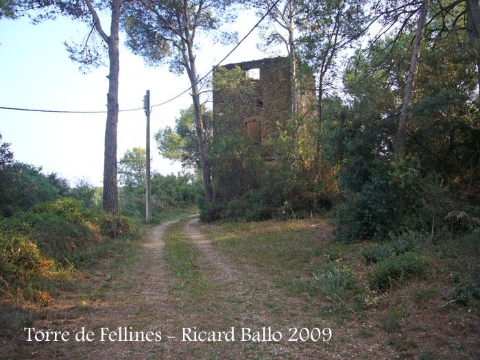 torre-de-fellines-090926_511bisblog