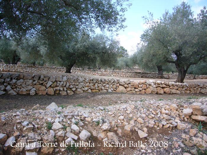 torre-de-fullola-el-perello-080229_518