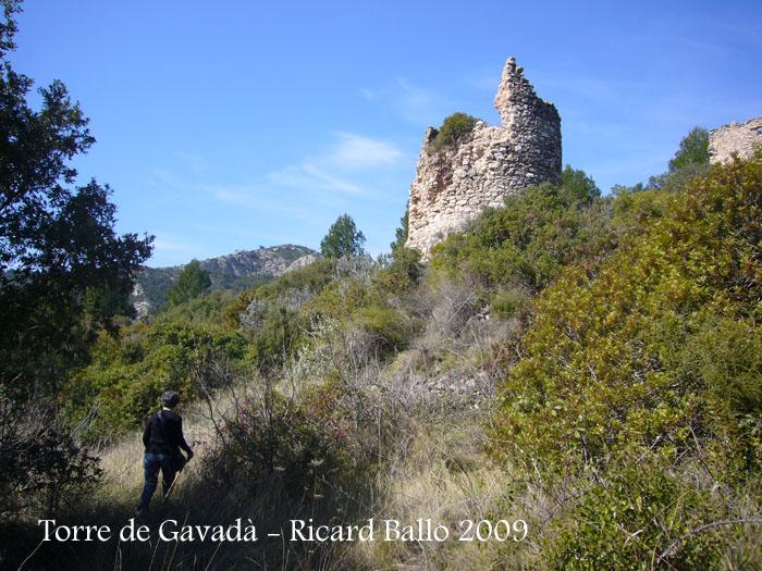torre-de-gavada-090314_503