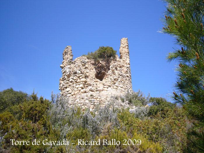 torre-de-gavada-090314_505