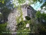 torre-de-la-guinovarda-110505_510