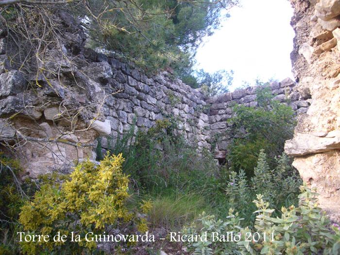 torre-de-la-guinovarda-110505_513