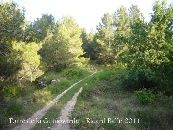 torre-de-la-guinovarda-110505_518