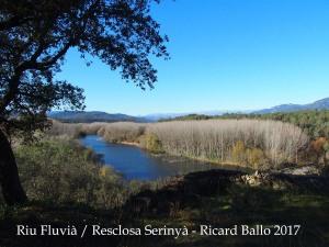 La Resclosa de Serinyà, apaivagant les aigües del riu Fluvià