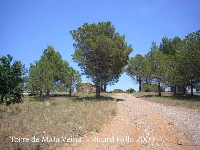 torre-de-mala-veina-garriguella-090618_504