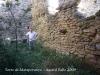 Torre de Mataperunya.Un visitant empetitit per les considerables mides d'aquesta edificació.
