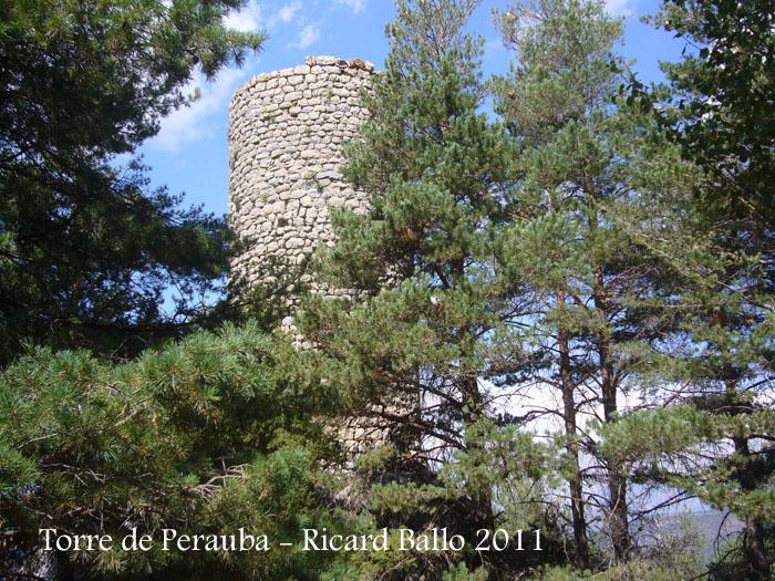torre-de-perauba-110901_504