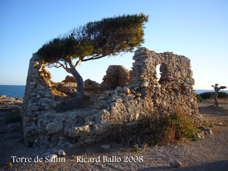 castell-de-sant-jordi-dalfama-080209_504