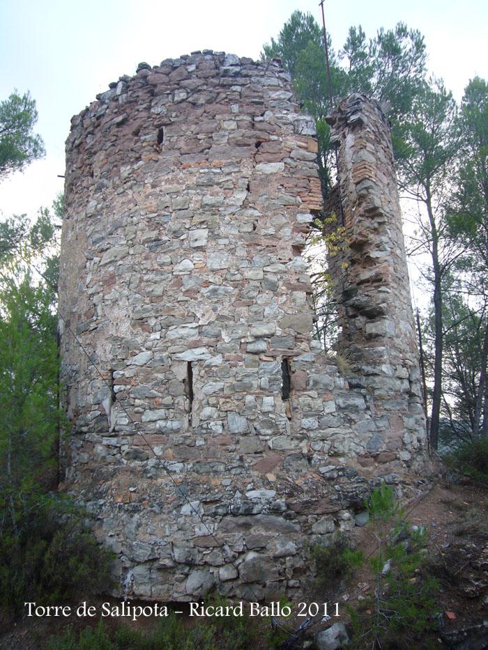 torre-de-salipota-111101_506