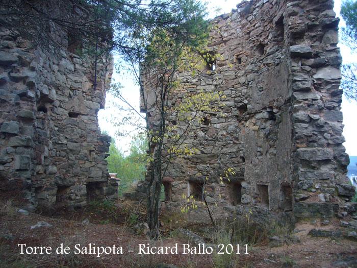torre-de-salipota-111101_512