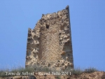 torre-de-sallent-110621_530