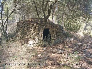 vora-la-torre-de-serrasanc-120308_501bisblog