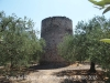 Torre del Fargas – Riudoms