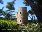 torre-del-mas-agusti-100603_507