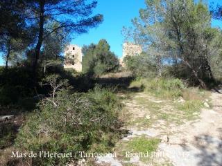 Camí per anar a la Torre del Mas de l'Hereuet – Tarragona